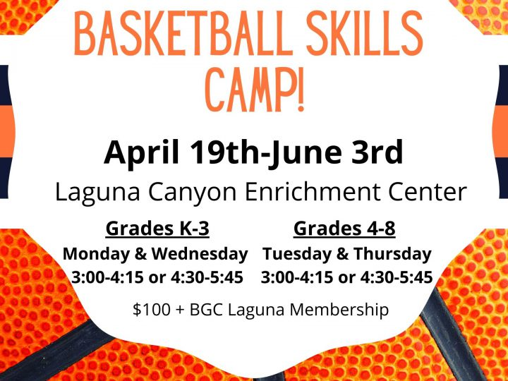 Spring Basketball Skills Camp!